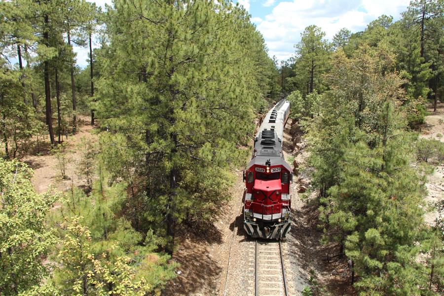 Mejor época para viajar al tren Chepe